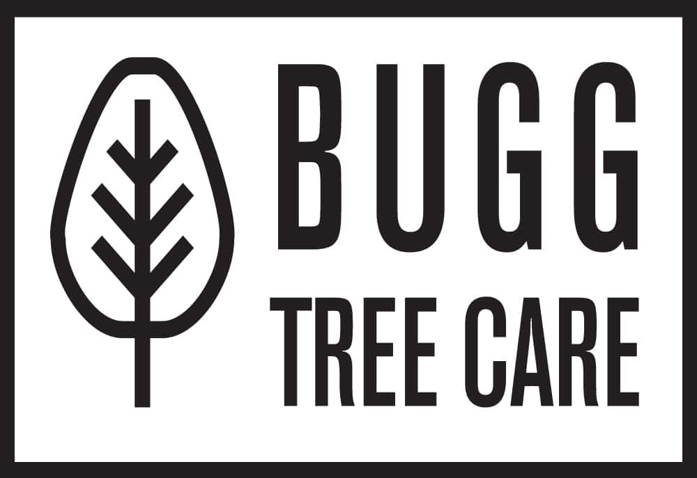 Bugg Tree Care transparent rectangle logo