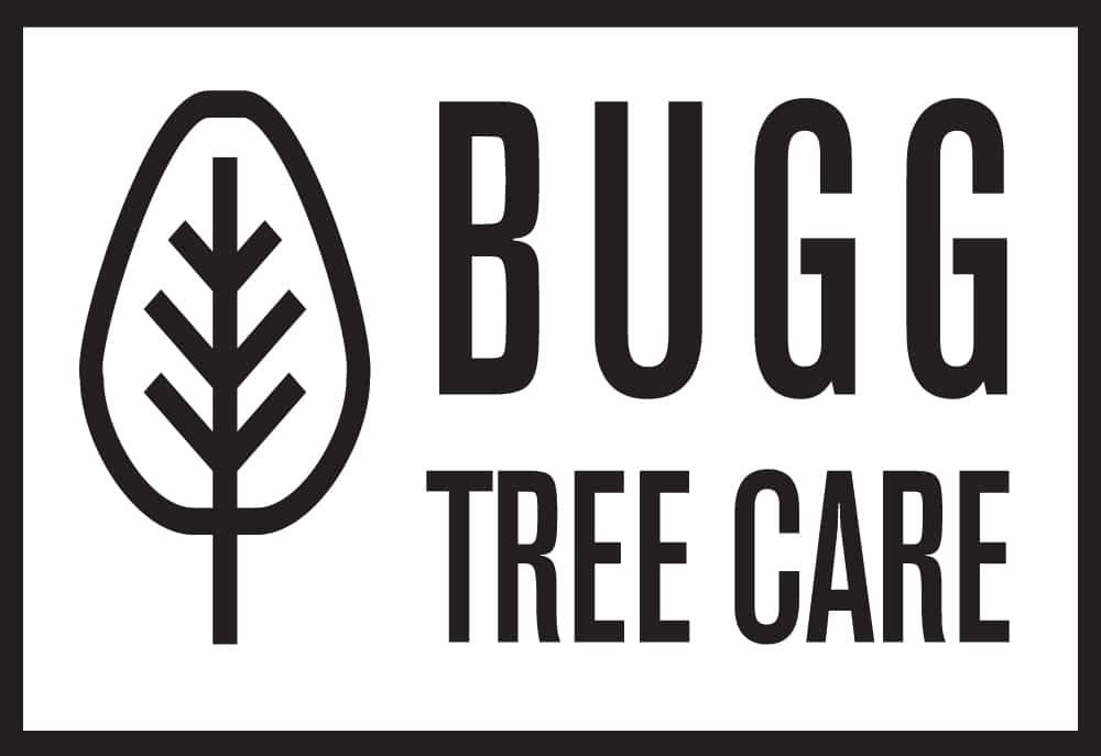 Bugg Tree Care transparent rectangle logo