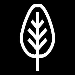 Bugg Tree Care logo white