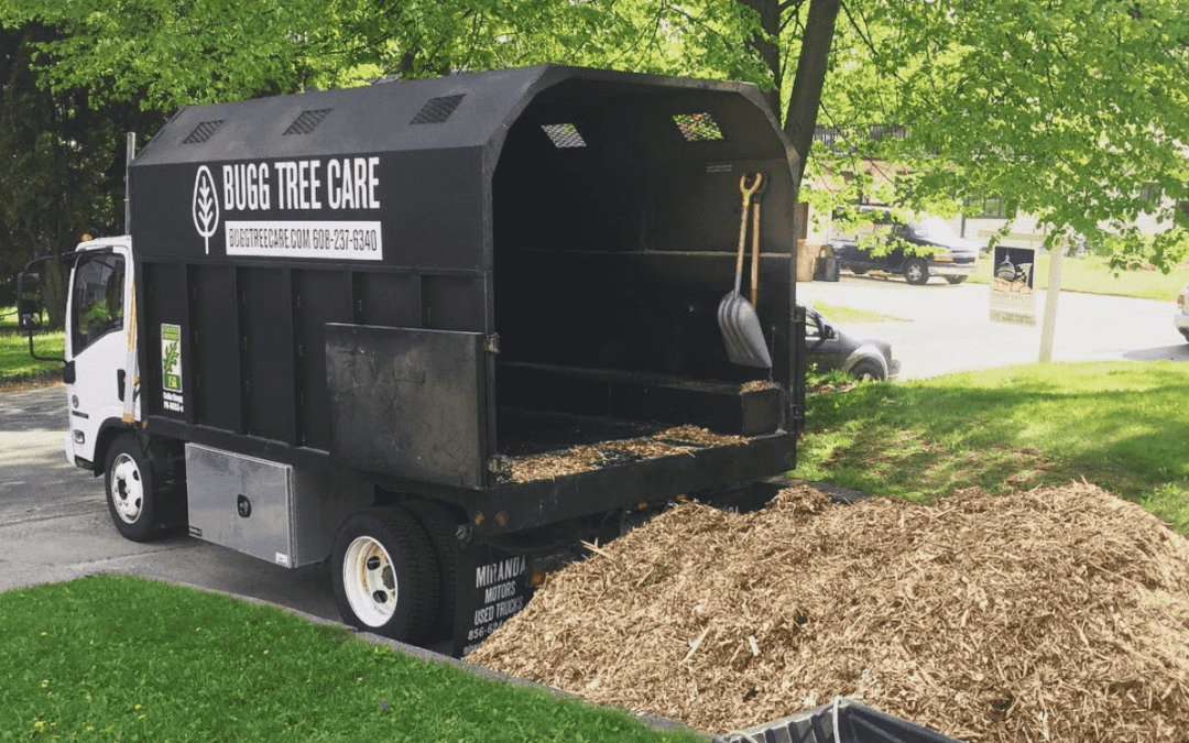 BUGG TREE CARE truck with a pile of free wood chips